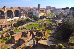 The View from Palatine Hill, Rome