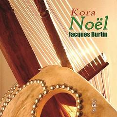 plucked string instruments, string instrument, clãrsach, folk instrument, string instrument,
