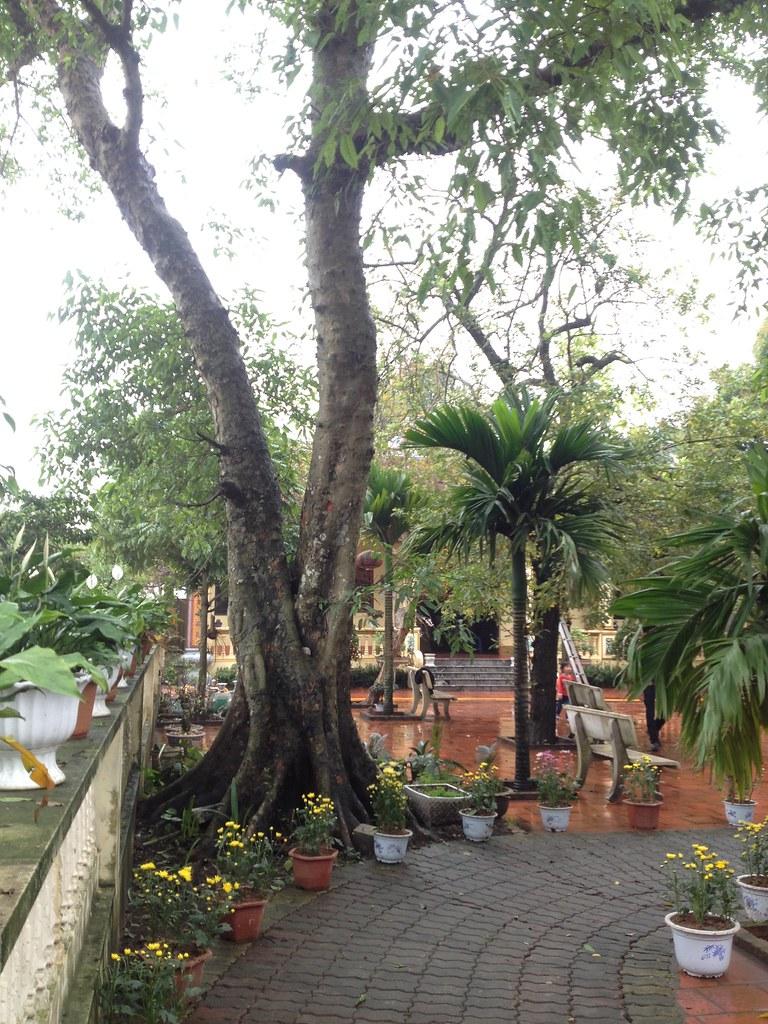 Co Phap Pagoda (3)