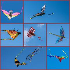 Washington DC Kite Festival