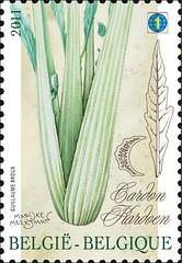 09 GROENTEN VAN VROEGER timbree