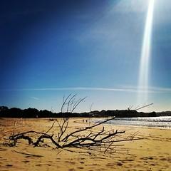 "Al ""caloret"" en la playa semi-desierta"