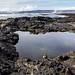Icelandic south coast by th.egilson