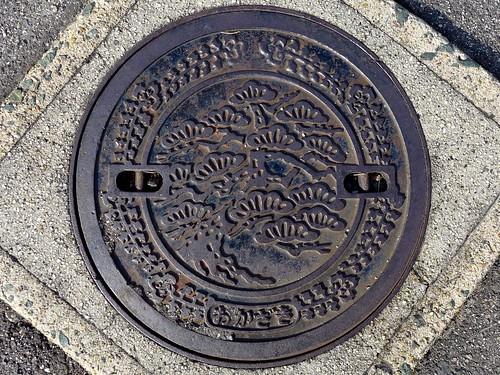 Okazaki Aichi, manhole cover 4 (愛知県岡崎市のマンホール4)