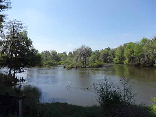 Looking south at Flint River, Flint River Park