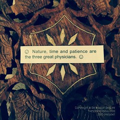 3 Great Physicians