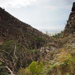 Sa, 14.03.15 - 15:14 - Landschaft um Villa de Leyva