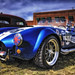 Cobra in HDR copy