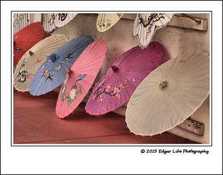 Umbrella 03