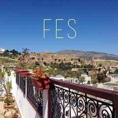 Fes, #Morocco #travel diaries