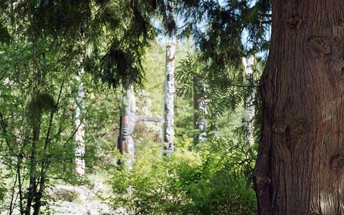 Totem Poles, Stanley Park, Vancouver