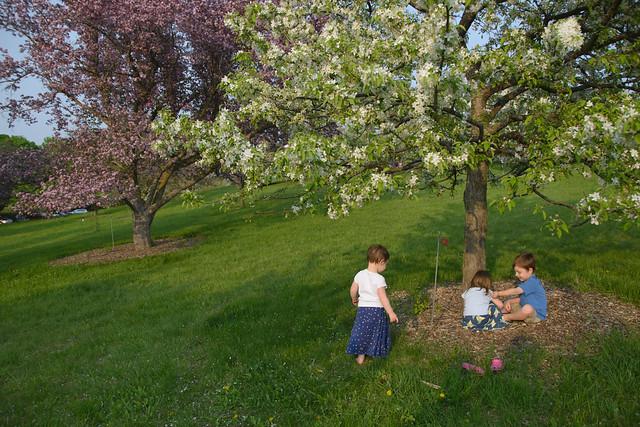 CrabApple Arboretum-79