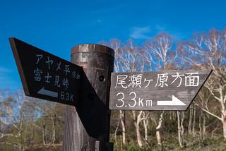 鳩待峠の道標