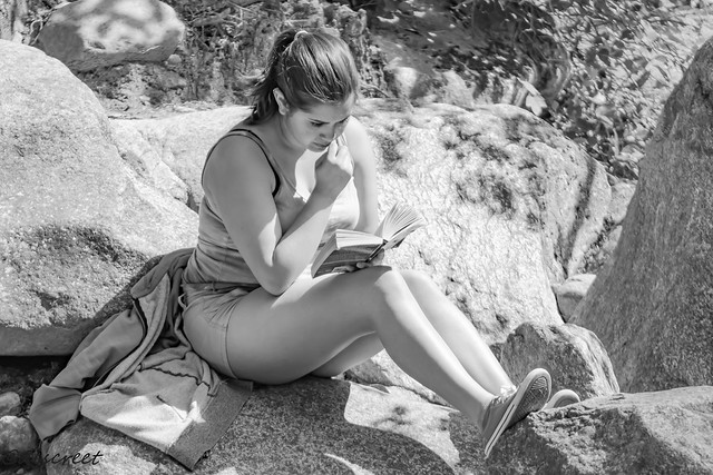 reading under the sun over a rock