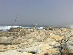 Rock formations on Carmel Middle Beach/three branches