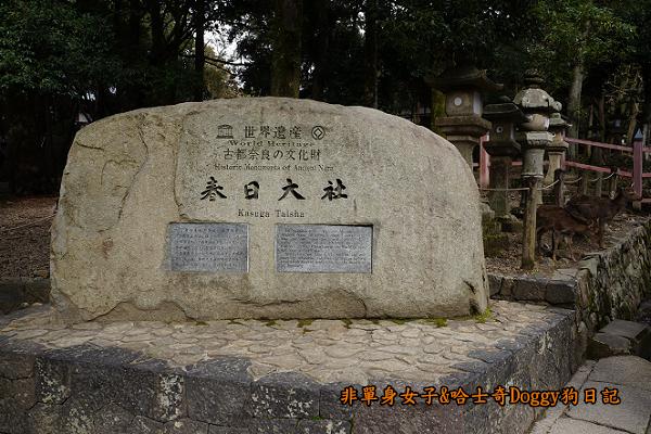 日本奈良春日大社30