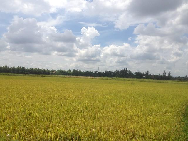 Trip to Quang Tri (46)