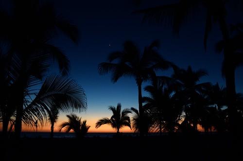 trees sunset sky beach silhouette palms mexico star evening dusk palmtree tropical mazatlan sinaloa beachscape