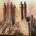 Small photo of Tall chimneys
