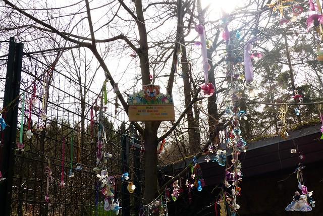 Zoo Eberswalde 22.03.2015   158