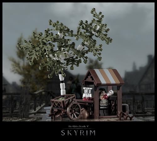Skyrim – Marketplace in Riften (Photomontage)