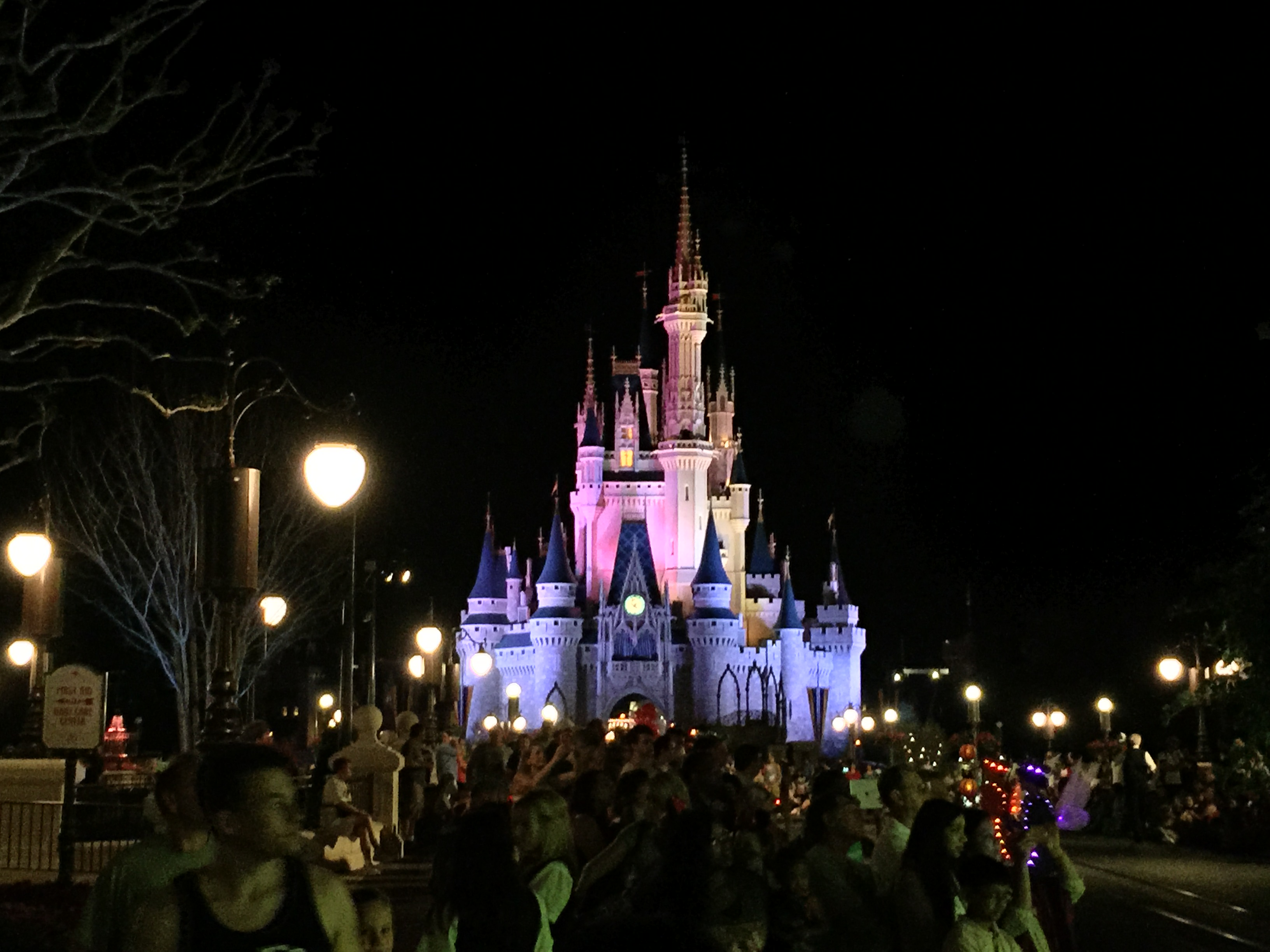 Disney World Day 1 2015