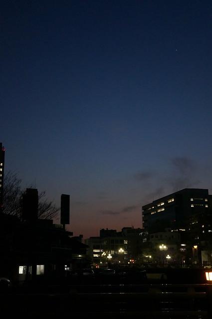 magic hour of spring sakura season
