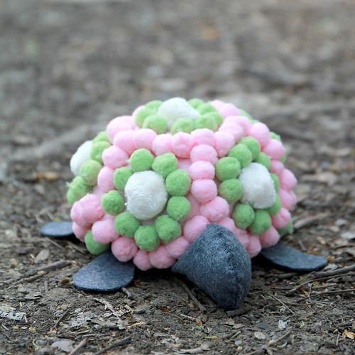 Pom Pom Turtle