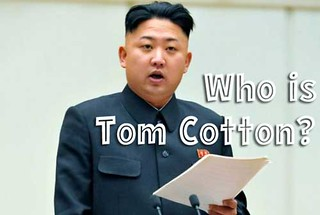 Who-is-Tom-Cotton-2