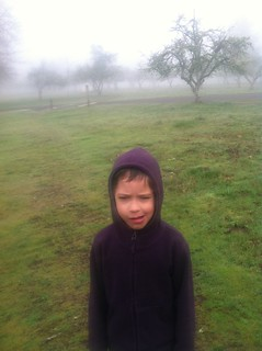 Foggy morning in the Willamette Mission State Park