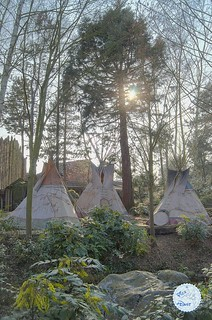 Tepees in Frontierland