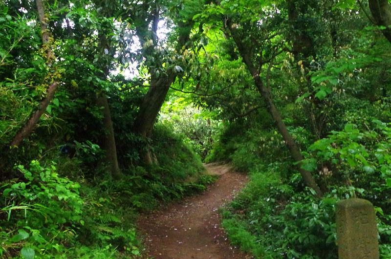 toomilog-tengoku_Hiking_trail010