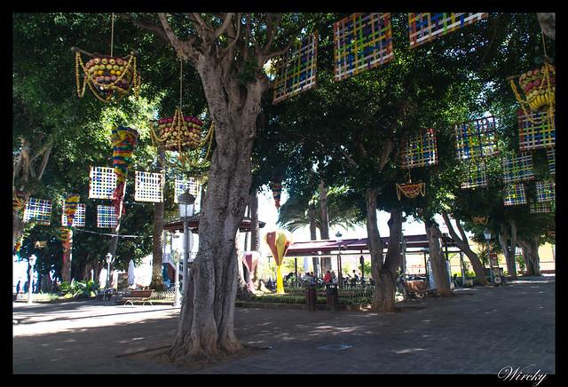 Icod de los Vinos ciudad drago milenario - Celebrando las fiestas de San Marcos