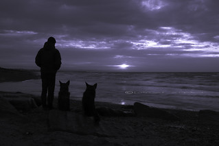watching the sunrise with these two.....