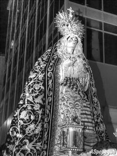 Nuestra Señora de la Concepción (Huerto)