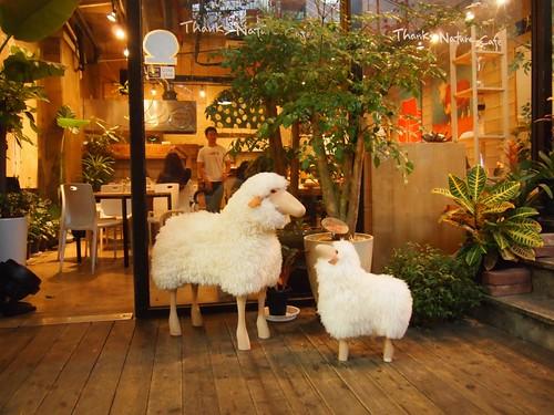 sheeps cafe 2