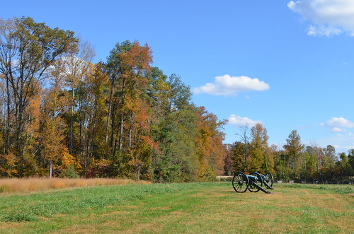 Fall Trees at Gaines' Mill