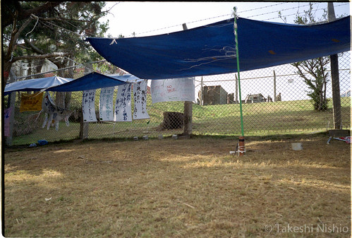テントの後ろも基地 / back side of tent is also base