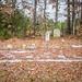 Shiloh AME Cemetery