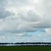 Horizon of trees and clouds - en route to Saint-Jean-de-Luz by Monceau