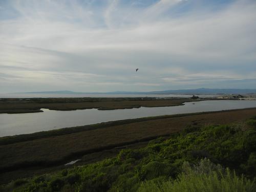 DSCN1962 Moss Landing, March 2015