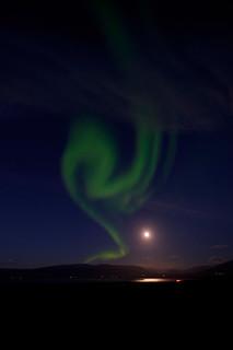 Nordlichter in der Nähe von Skagafjörður | Roland Krinner