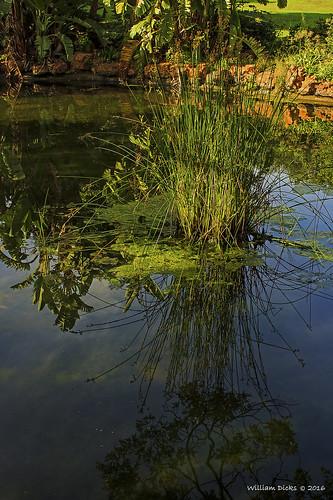 Jan Cilliers Park