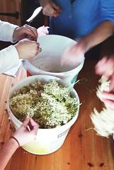 Recent Elderflower cordial - making ... Hands Work…