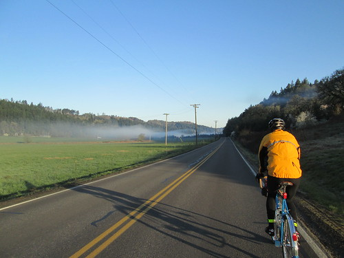 Kevin, and the morning fog on North Valley Rd