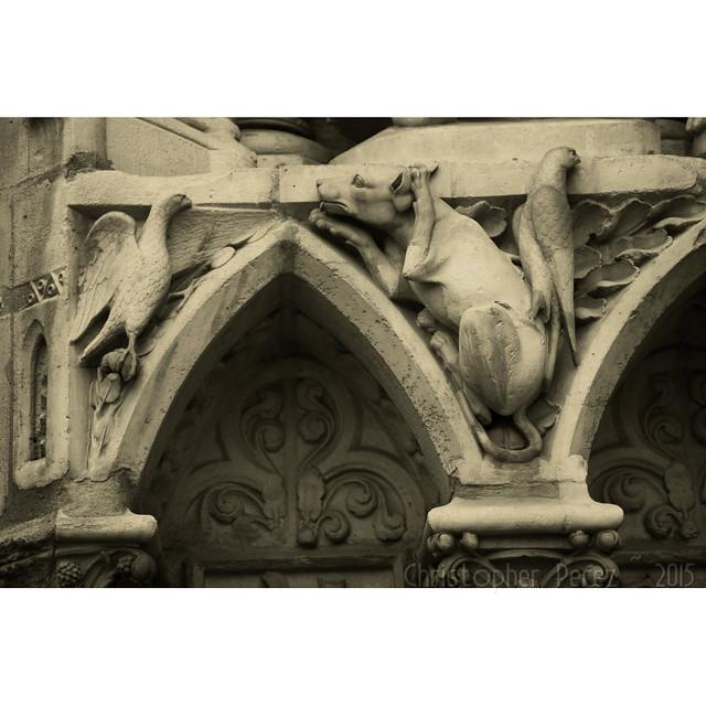 Notre Dame de Paris ~ Library in Stone