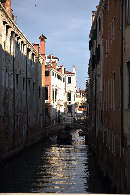 Photo:One of River of Venice Pt.1 By meeekn