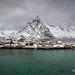 Lofoten - Sakrisøya