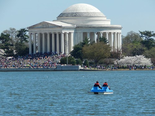Paddle boat and Jefferson Memorial