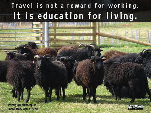 Travel is not a reward for working, it is education for living @BlackSheepInn